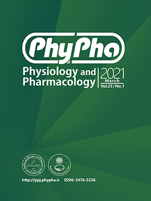 phypha journal